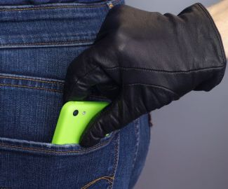 coachella phone still 2
